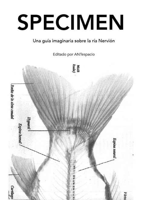 ¡¡Publicada la Guía Specimen!!